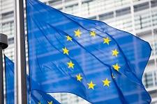 bandiera europea web