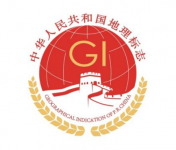thumb china logo